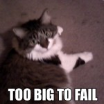 Fat Kitties - Too Big To Fail!