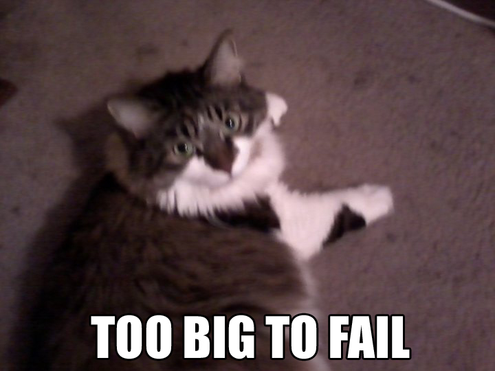 Fat Kitties - Too Big To Fail!