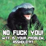 Honey Badger vs. Black Wolf 2