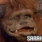 Labyrinth - Sarah Friend
