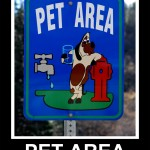 Pet Area