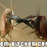 Them Bitches Cray!