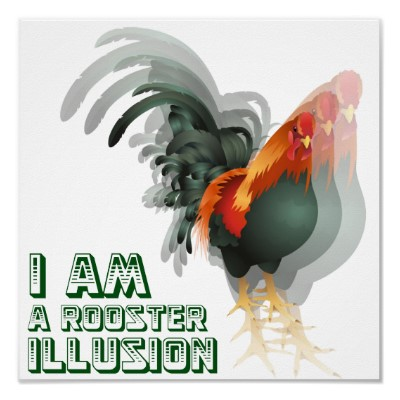 I&#039;m A Rooster Illusion Poster