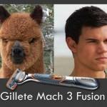 gillete mach 3 fusion
