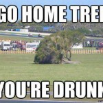 go home tree
