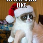 grumpy cat xmas